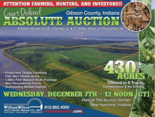 COURT ORDERED ABSOLUTE AUCTION - 430 ACRES +/-
