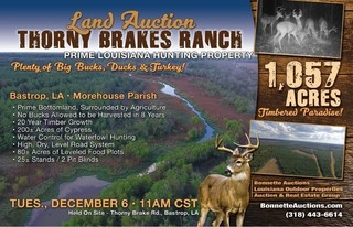 Louisiana Hunting Land For Sale at Auction in Bastrop, LA