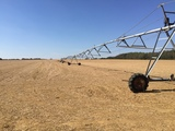 200± TOTAL ACRES -