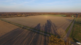 CLAY COUNTY LAND AUCTION 194 +/- ACRES