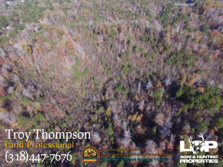 92 +/- acres of land for sale in Caldwell Parish