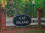 Bank Owned Lot on Cat Island in Beaufort, SC