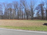 6 Acres +/- Mt. Pleasant - Myron Sprinkle Estate