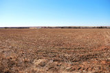 275 Acres West of Thomas, OK