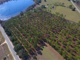 13+/- Acres w/ Frontage on Hwy. 253 & Hwy. 374, Donalsonville, GA