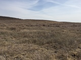 LAND AUCTION - HARPER COUNTY