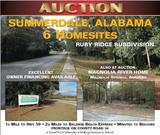 Land Auction! Six home building sites in Summerdale near Mobile and Gulf Shores in the Ruby Ridge subdivision