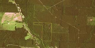 93 +- acres Timberland