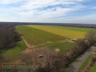 LECOMPTE, LA FARMLAND AUCTION