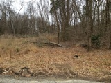 Bank Owned Wooded Building Lot in Blackwood