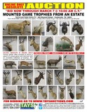 ONLINE ONLY ABSOLUTE AUCTION  Mounted Game Trophies from an Estate