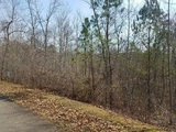 2.1+/- Acre Lot in Tranquility at Carters Lake in Ellijay, GA