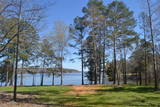 28.96 Acres on Lake Wateree Online Auction