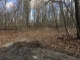 26.3 Acres (±) in 5 Tracts