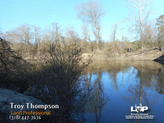 20 acres of hunting land for sale in Lasalle Parish