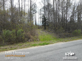 99 Acres Of Hunting Land For Sale In Richland Parish