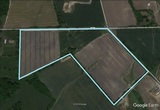 Picturesque 37 +/- Acre Parcel in Woolwich Township