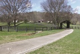 Country Home & Acreage Auction