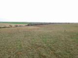 35 Acres for Homesite and/or Recreation