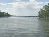 Home & Lot on Weiss Lake