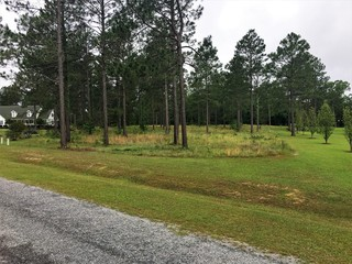 Pine Haven Subdiviion lot up for auction: