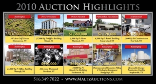2010 AUCTION HIGHLIGHTS
