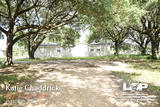 4 bed 2 bath Home on over 3 acres of land for sale in Pine Prairie