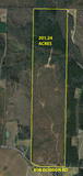 201 ACRES OF TIMBER LAND