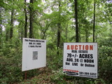 79+/- ACRES OF TIMBERLAND