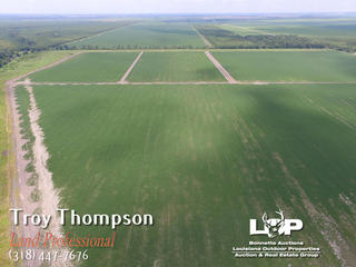 421 Acres of Land For Sale in Madison Parish