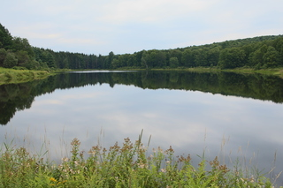 157+ ACRES, PRIVATE LAKE