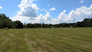 Fields Mobile Home Park and Farm, Swainsboro, GA: