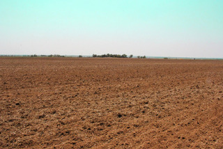 280 Acres - 4 Tracts Irrigated & Dryland - Near Hydro, OK