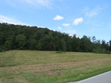 2 -5 ACRE BLDG. LOTS