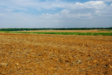 135 Acres - Farmland & Commercial Sites - Hydro, OK