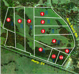 LAND AUCTION - +/-120 Acres in Sylacauga, AL