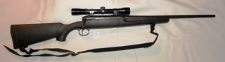 Savage Axis: Gun lot #7 Savage Axis 223 cal. Remington, synthetic stock, Bushnell scope-VG cond.