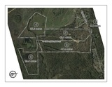 Absolute Auction-155 Acres Offered in 5 Tracts