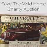 Charity Benefit Auction Help us save a wild horse or burro!