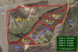 Real Estate Auction 84+/- Acres Grenada, MS