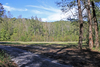 Land Auction: Two 20+/- Mountain Acreage Tracts