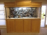 EXECUTIVE OFFICE FURNITURE / KITCHEN EQUIPPMENT / APPLIANCES / FILE CABINETS / IT EQUIPMENT AUCTION