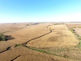 SAUNDERS COUNTY (DRYLAND) FARMLAND AUCTION