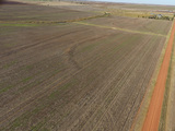 11/21 80± ACRES • CROPLAND • SPRING FED CREEK • PRODUCING MINERALS
