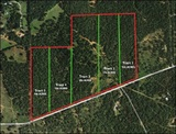 Bastrop County Land Auction