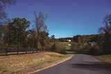 Auction - 7 Residential Development Lots