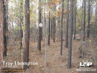 42.5 acres of land for sale in Caldwell Parish