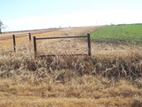 1/22 160± Acres Cultivation * Pasture * Ponds