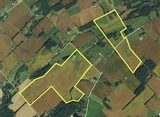 306 Acre farm SW of Cedarville
