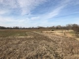 U. S. Bankruptcy Land Auction-Tallahatchie County, MS